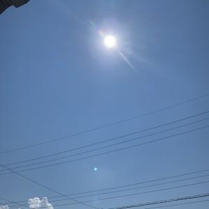 猛暑日和☆